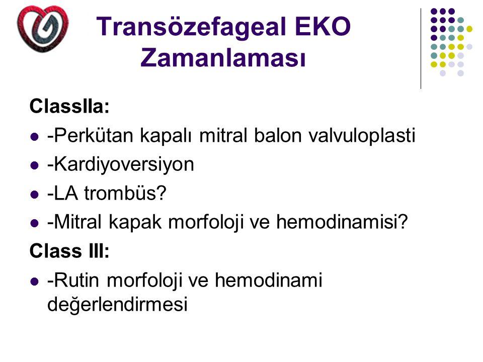 Transözefageal EKO Zamanlaması