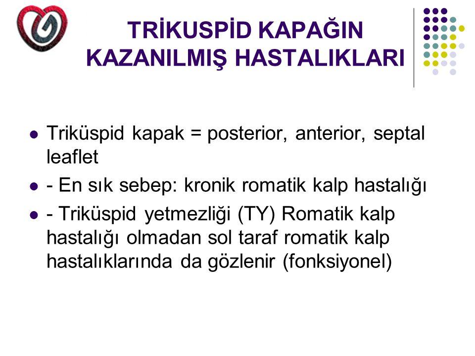 TRİKUSPİD KAPAĞIN KAZANILMIŞ HASTALIKLARI