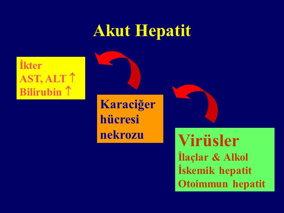 Akut Hepatit Virüsler Karaciğer hücresi nekrozu