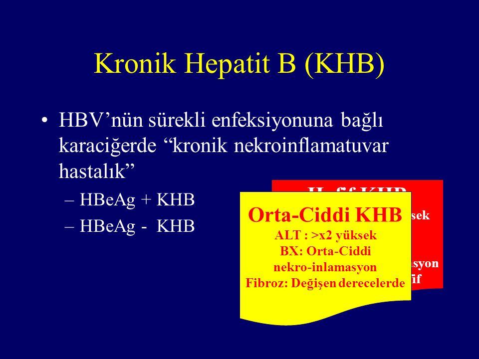 Kronik Hepatit B (KHB) HBV'nün sürekli enfeksiyonuna bağlı karaciğerde kronik nekroinflamatuvar hastalık