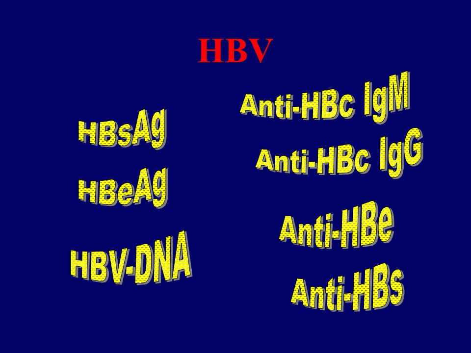 HBV Anti-HBc IgM HBsAg Anti-HBc IgG HBeAg Anti-HBe HBV-DNA Anti-HBs