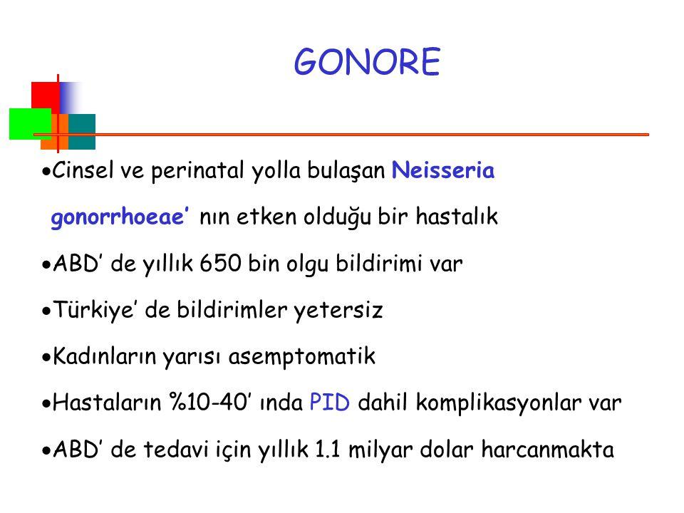 GONORE Cinsel ve perinatal yolla bulaşan Neisseria