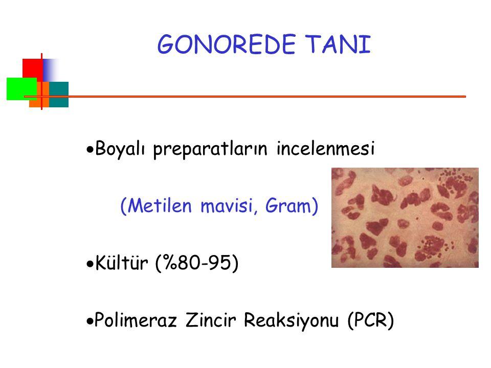 GONOREDE TANI Boyalı preparatların incelenmesi (Metilen mavisi, Gram)
