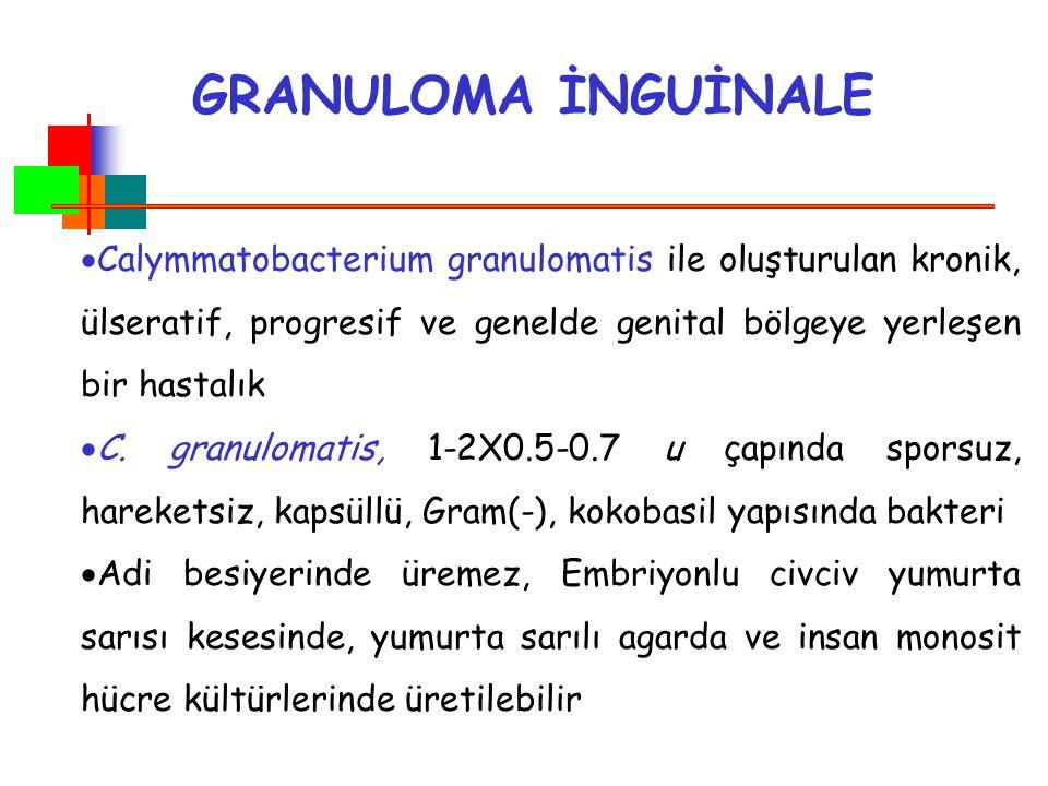 GRANULOMA İNGUİNALE Calymmatobacterium granulomatis ile oluşturulan kronik, ülseratif, progresif ve genelde genital bölgeye yerleşen bir hastalık.