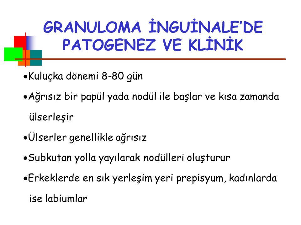 GRANULOMA İNGUİNALE'DE PATOGENEZ VE KLİNİK