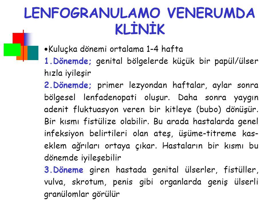 LENFOGRANULAMO VENERUMDA KLİNİK