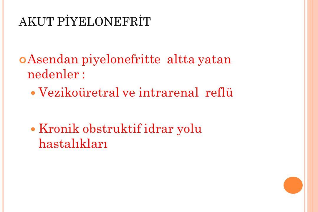Asendan piyelonefritte altta yatan nedenler :