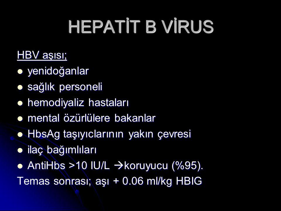 HEPATİT B VİRUS HBV aşısı; yenidoğanlar sağlık personeli