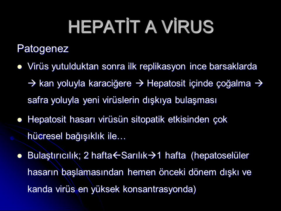 HEPATİT A VİRUS Patogenez