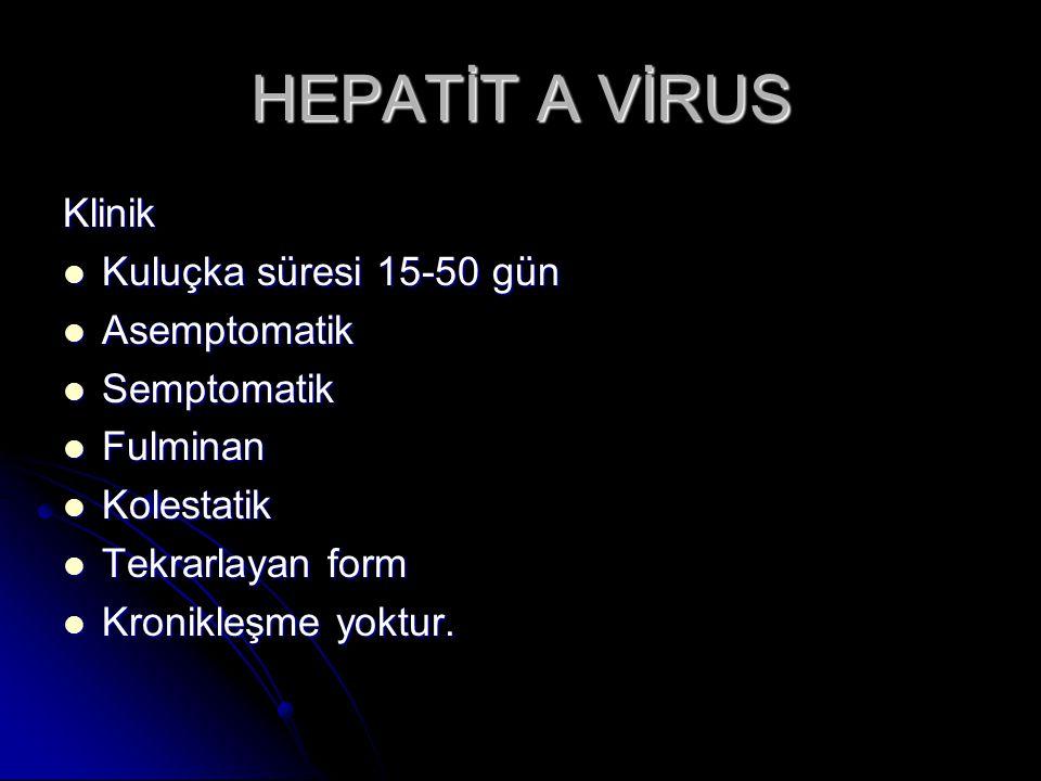 HEPATİT A VİRUS Klinik Kuluçka süresi 15-50 gün Asemptomatik