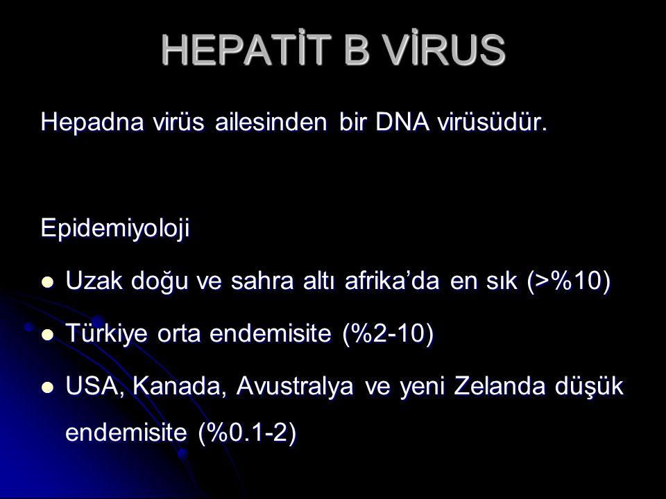 HEPATİT B VİRUS Hepadna virüs ailesinden bir DNA virüsüdür.