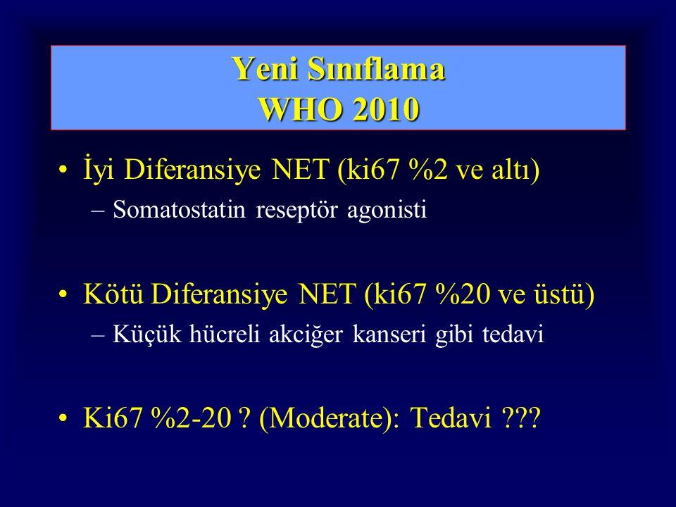 Yeni Sınıflama WHO 2010 İyi Diferansiye NET (ki67 %2 ve altı)