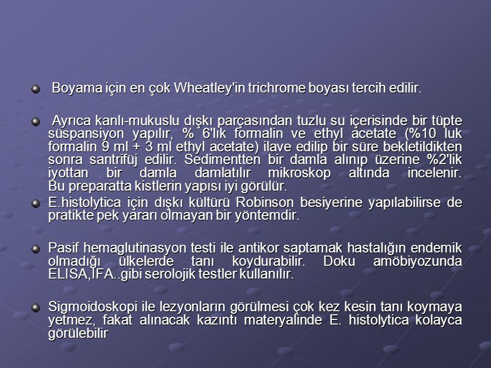Boyama için en çok Wheatley in trichrome boyası tercih edilir.
