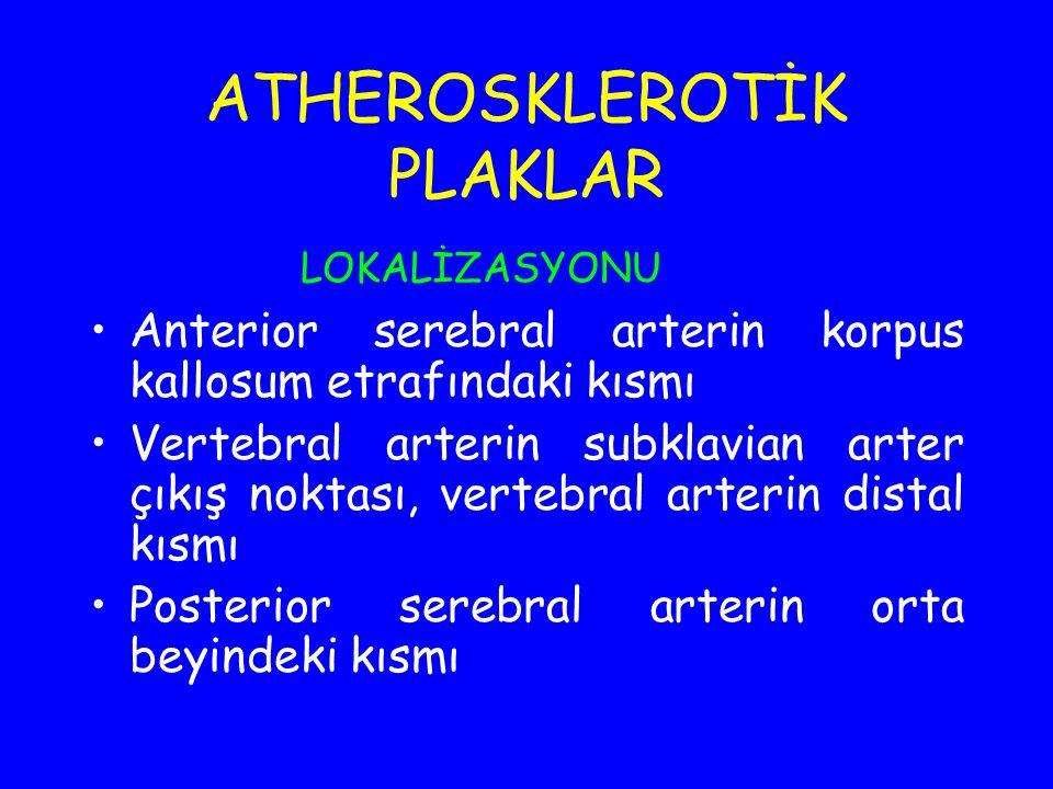ATHEROSKLEROTİK PLAKLAR