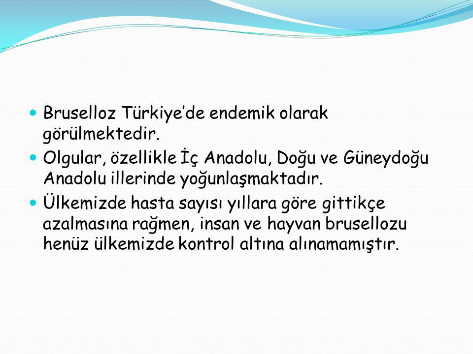 Bruselloz Türkiye'de endemik olarak görülmektedir.