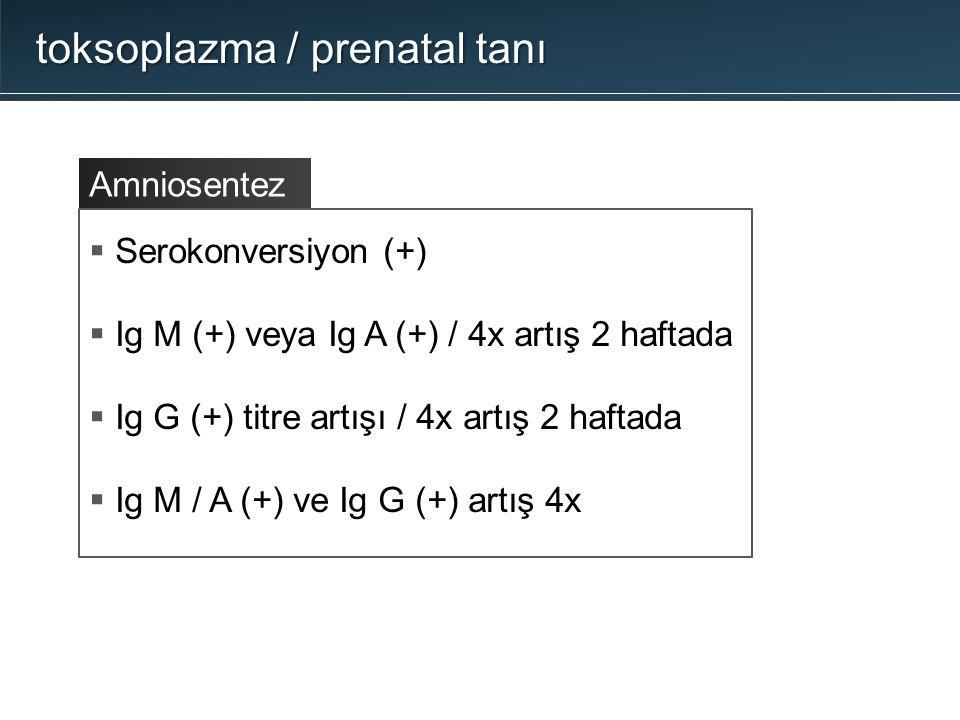 toksoplazma / prenatal tanı