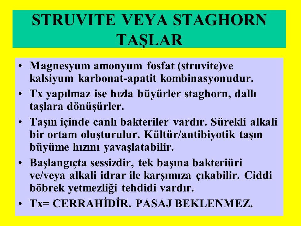 STRUVITE VEYA STAGHORN TAŞLAR