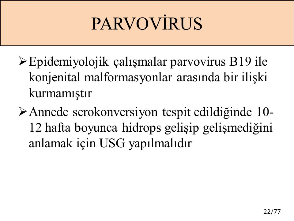 PARVOVİRUS Epidemiyolojik çalışmalar parvovirus B19 ile konjenital malformasyonlar arasında bir ilişki kurmamıştır.