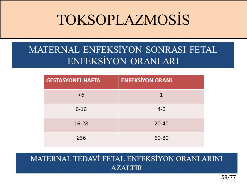 TOKSOPLAZMOSİS MATERNAL ENFEKSİYON SONRASI FETAL ENFEKSİYON ORANLARI