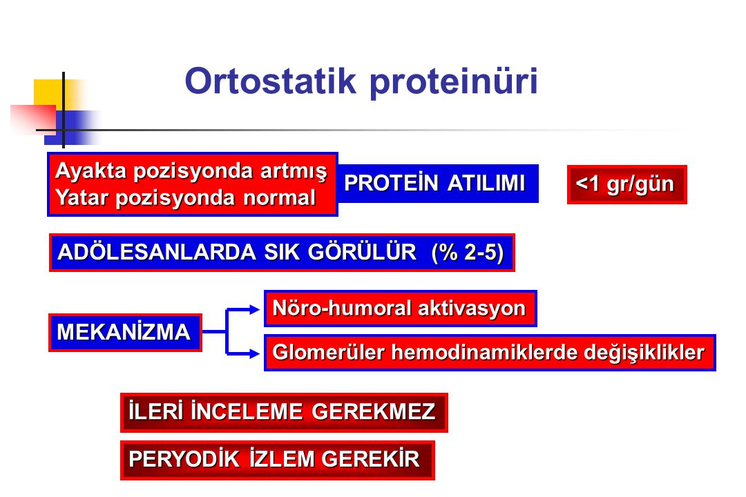 Ortostatik proteinüri