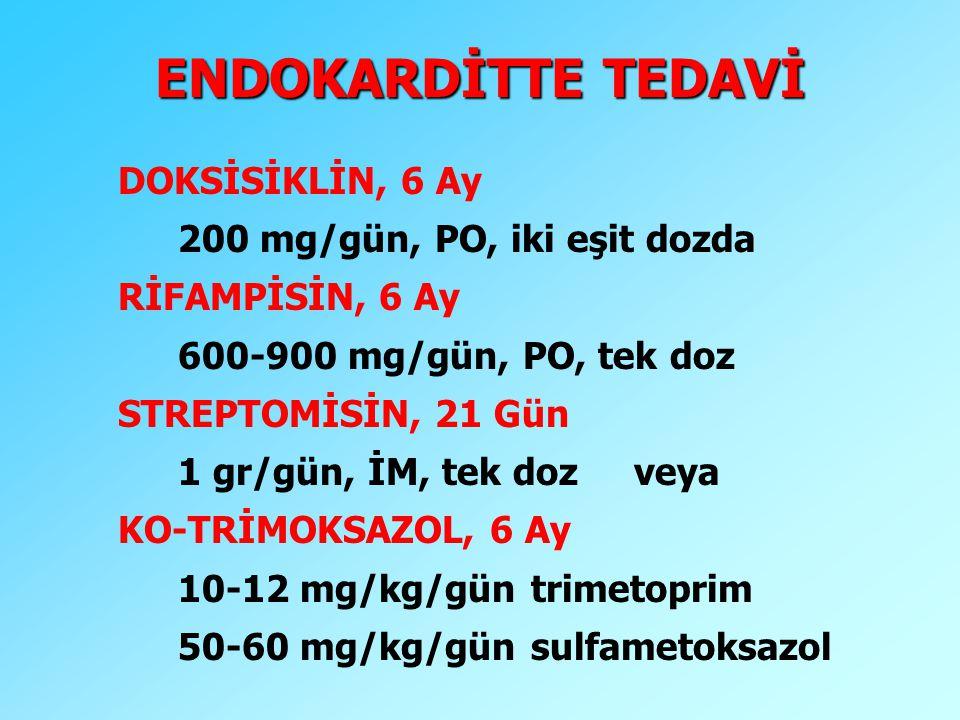 ENDOKARDİTTE TEDAVİ DOKSİSİKLİN, 6 Ay 200 mg/gün, PO, iki eşit dozda