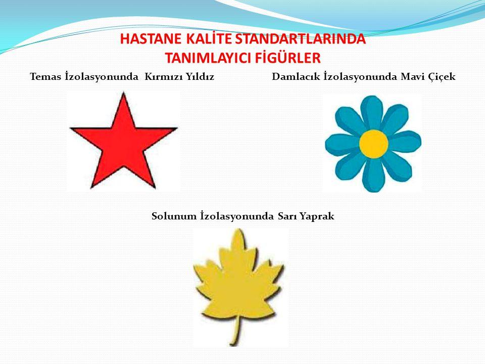 HASTANE KALİTE STANDARTLARINDA TANIMLAYICI FİGÜRLER