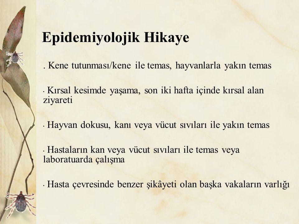 Epidemiyolojik Hikaye