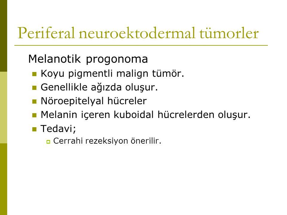 Periferal neuroektodermal tümorler