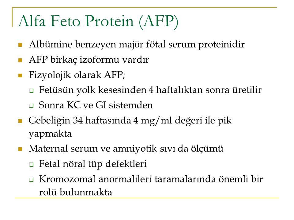 Alfa Feto Protein (AFP)