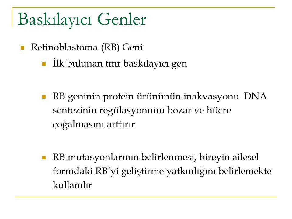 Baskılayıcı Genler Retinoblastoma (RB) Geni