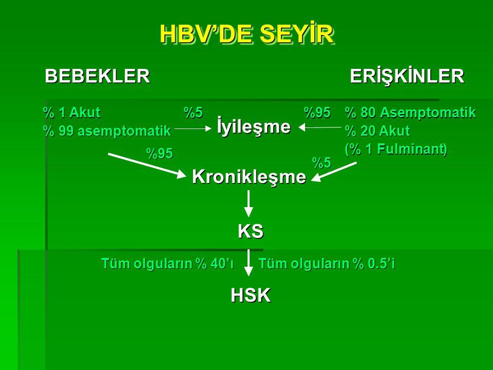 HBV'DE SEYİR BEBEKLER ERİŞKİNLER İyileşme Kronikleşme KS HSK % 1 Akut