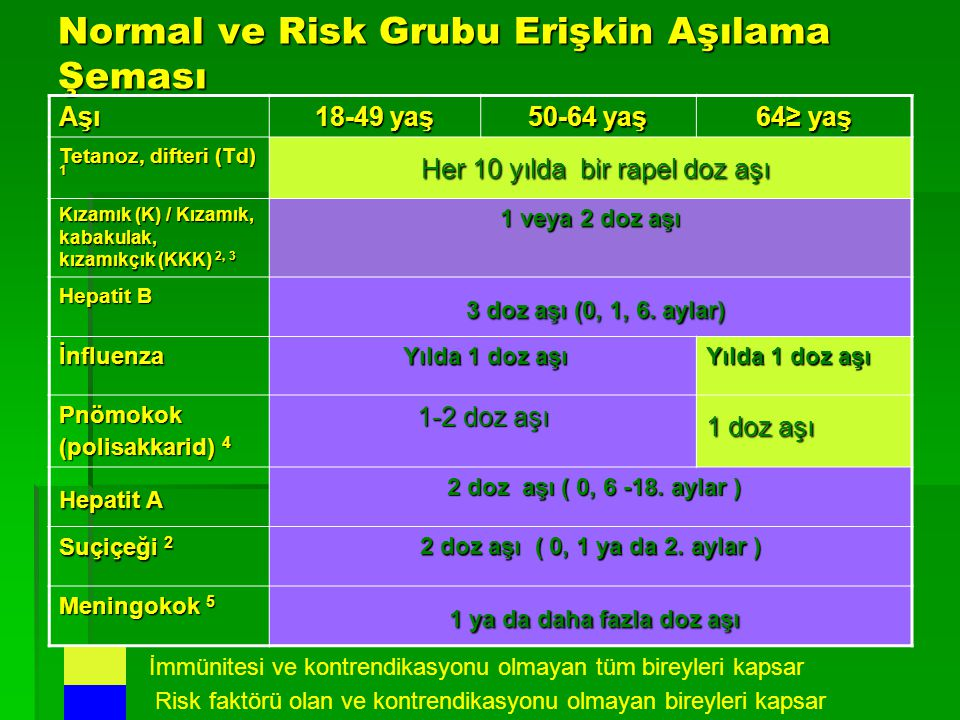 Normal ve Risk Grubu Erişkin Aşılama Şeması