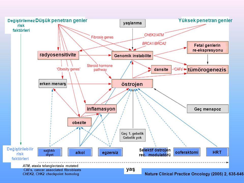 Yüksek penetran genler