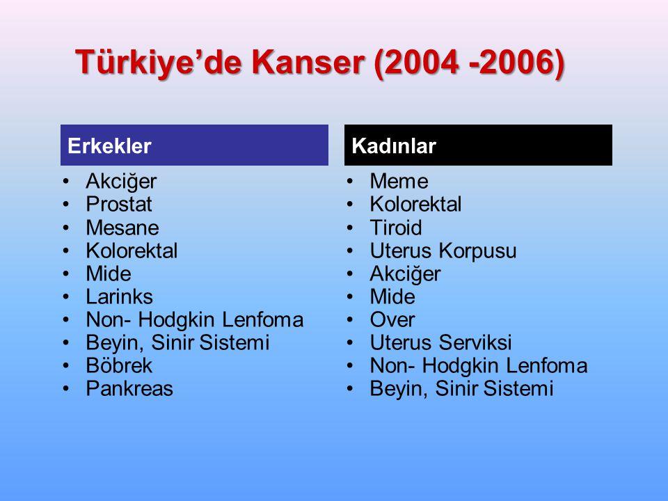 Türkiye'de Kanser (2004 -2006) Erkekler Kadınlar Akciğer Prostat