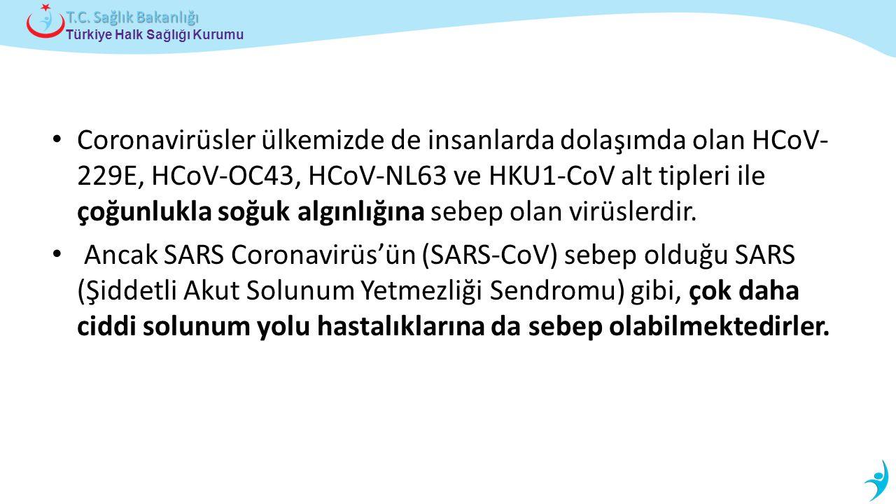 Coronavirüsler ülkemizde de insanlarda dolaşımda olan HCoV-229E, HCoV-OC43, HCoV-NL63 ve HKU1-CoV alt tipleri ile çoğunlukla soğuk algınlığına sebep olan virüslerdir.