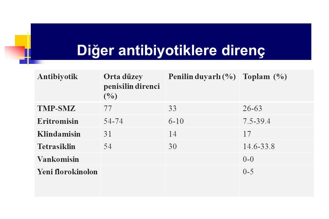 Diğer antibiyotiklere direnç