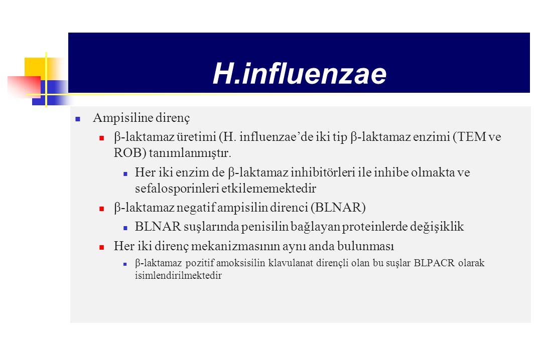 H.influenzae Ampisiline direnç