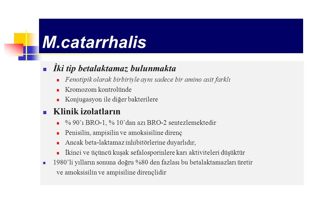 M.catarrhalis İki tip betalaktamaz bulunmakta Klinik izolatların