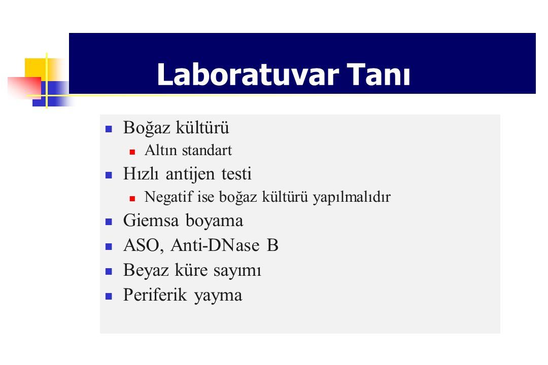 Laboratuvar Tanı Boğaz kültürü Hızlı antijen testi Giemsa boyama