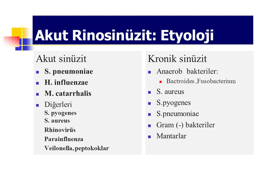 Akut Rinosinüzit: Etyoloji
