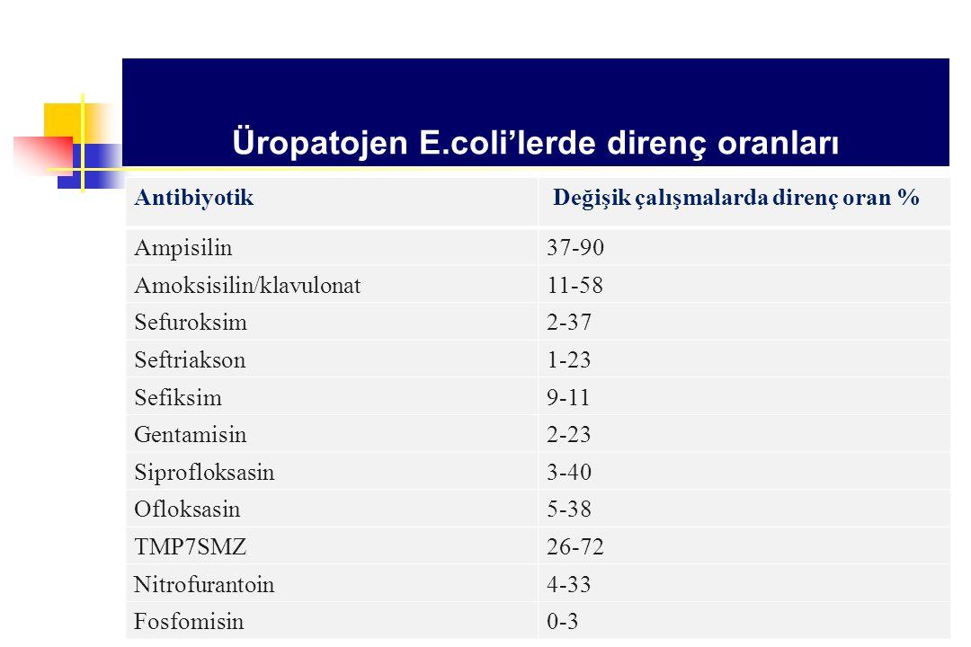 Üropatojen E.coli'lerde direnç oranları