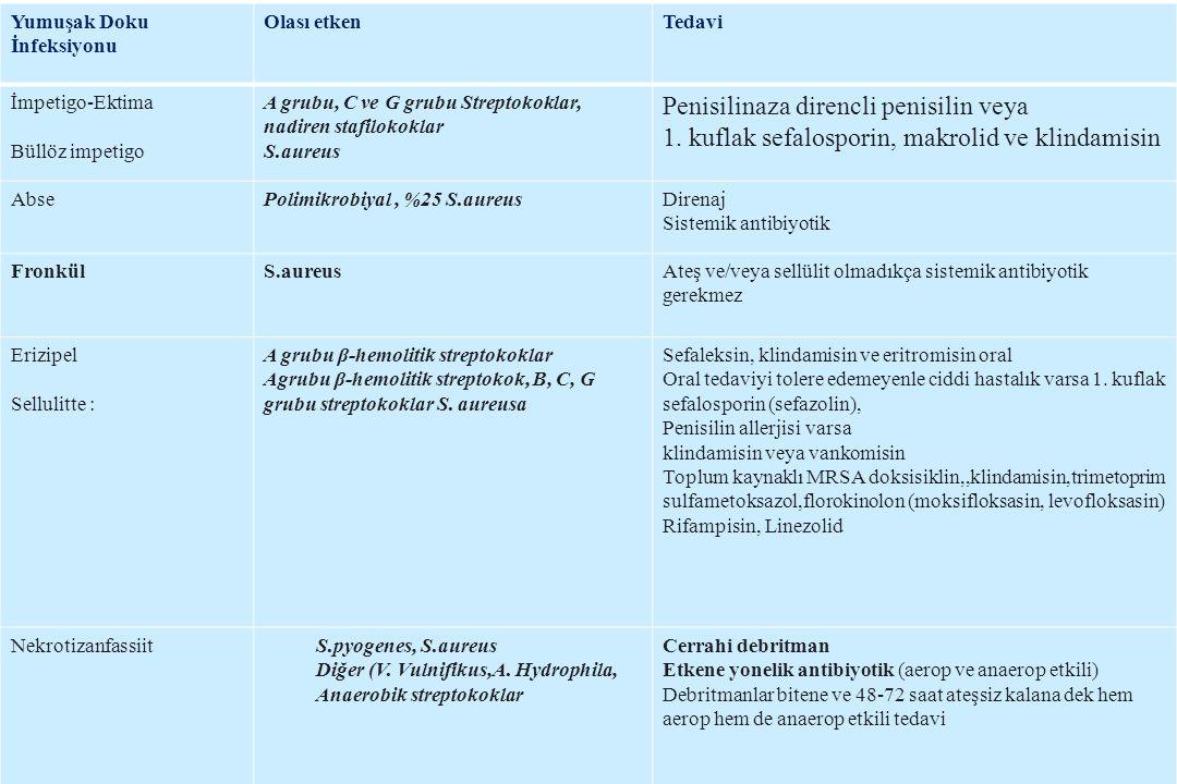 Penisilinaza direncli penisilin veya