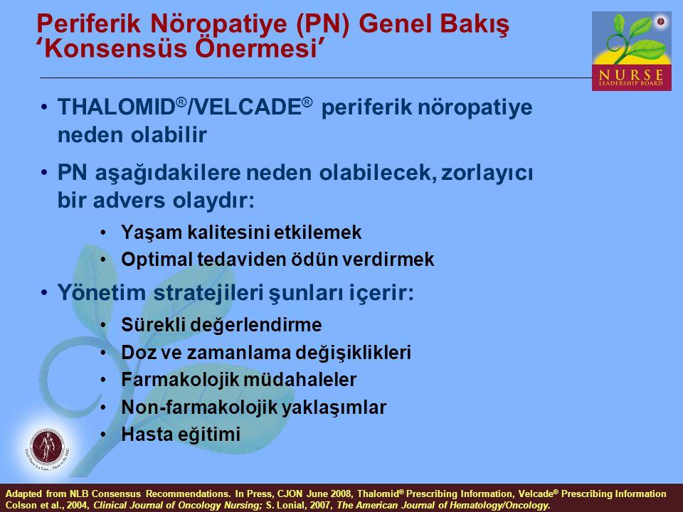 Periferik Nöropatiye (PN) Genel Bakış 'Konsensüs Önermesi'