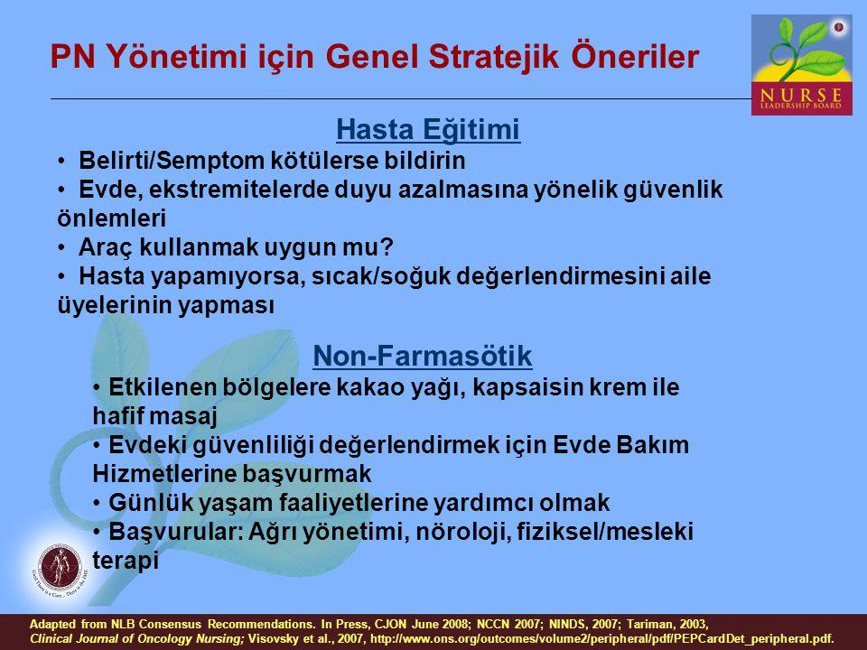 PN Yönetimi için Genel Stratejik Öneriler