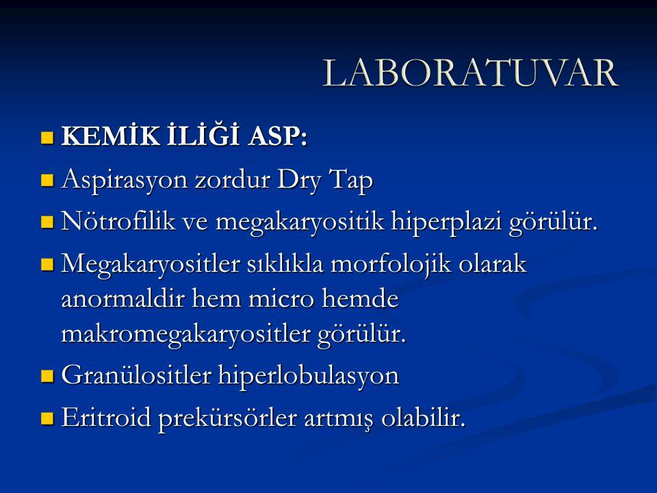 LABORATUVAR KEMİK İLİĞİ ASP: Aspirasyon zordur Dry Tap