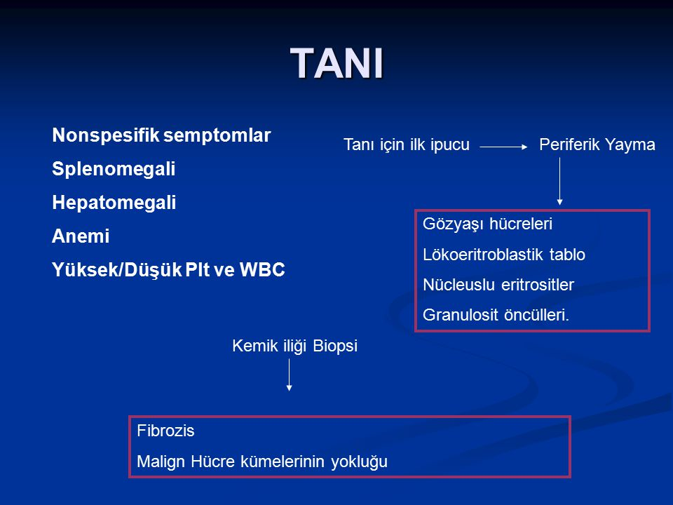 TANI Nonspesifik semptomlar Splenomegali Hepatomegali Anemi