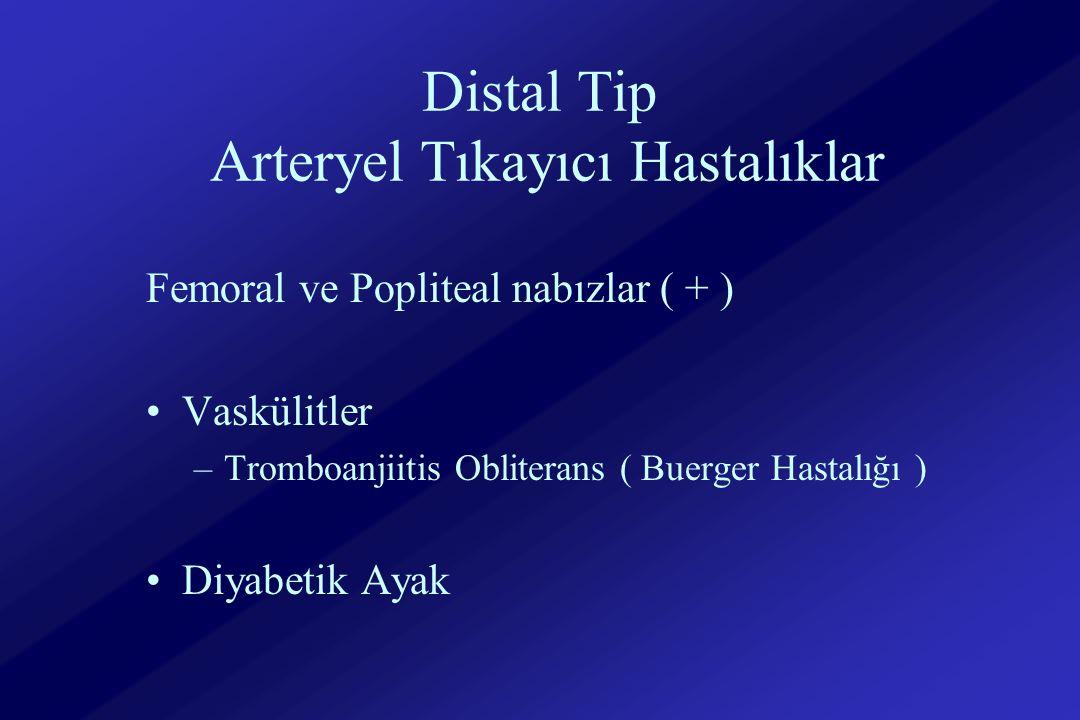 Distal Tip Arteryel Tıkayıcı Hastalıklar