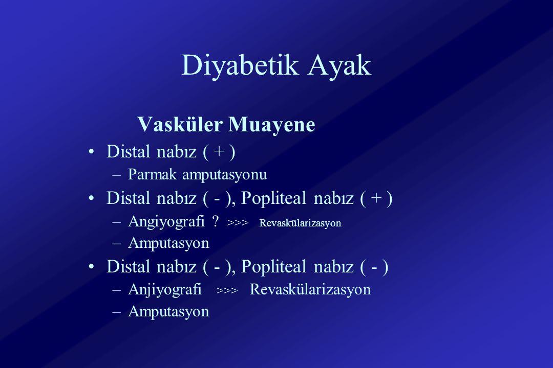 Diyabetik Ayak Vasküler Muayene Distal nabız ( + )