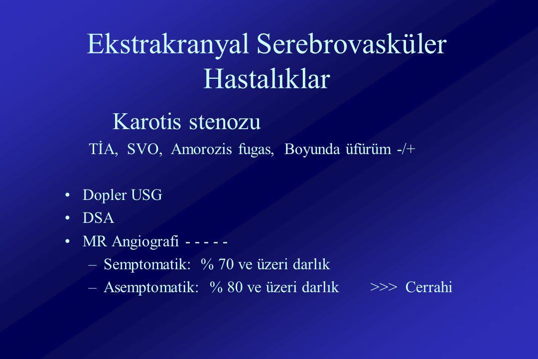 Ekstrakranyal Serebrovasküler Hastalıklar