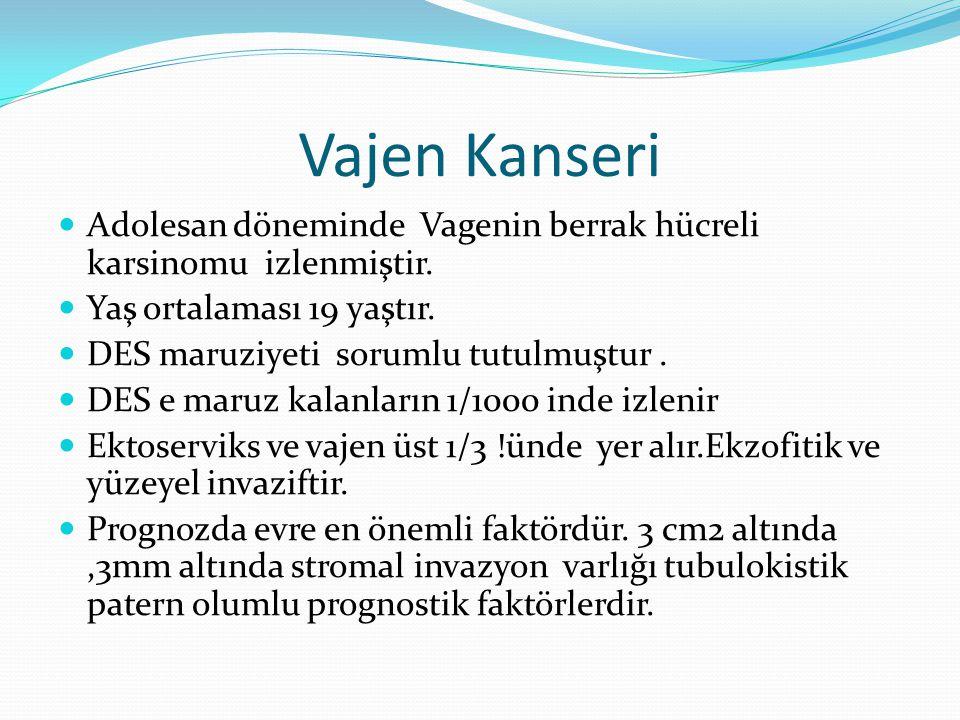 Vajen Kanseri Adolesan döneminde Vagenin berrak hücreli karsinomu izlenmiştir. Yaş ortalaması 19 yaştır.